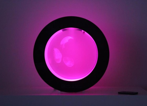 Cubic Orbit 20 with Pink Lights and Moon Jellyfish