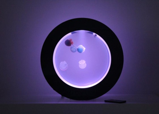 Cubic Orbit 20 with Purple LEDs and Blue Blubber Jellyfish