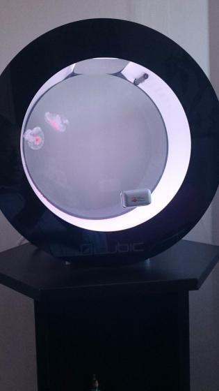 Amakusa Jellyfish in an Orbit 20 Jellyfish Tank