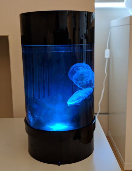 Jellyfish Art Cylinder Nano Blue 3