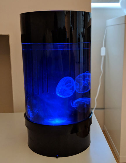Jellyfish Art Cylinder Nano Dark Blue
