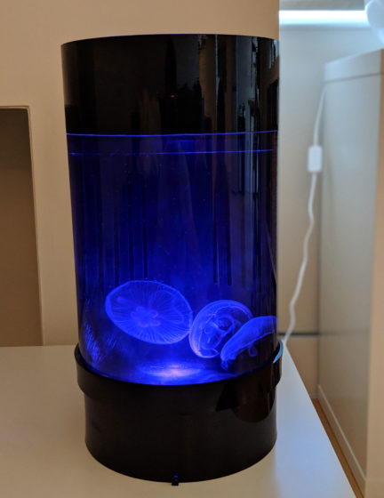 Jellyfish Art Cylinder Nano Dark Blue 2