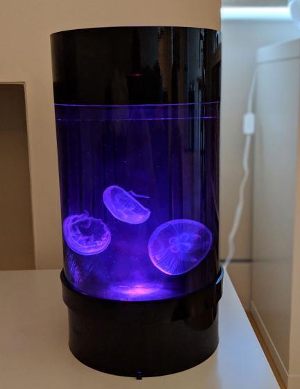 Jellyfish Art Cylinder Nano Mauve