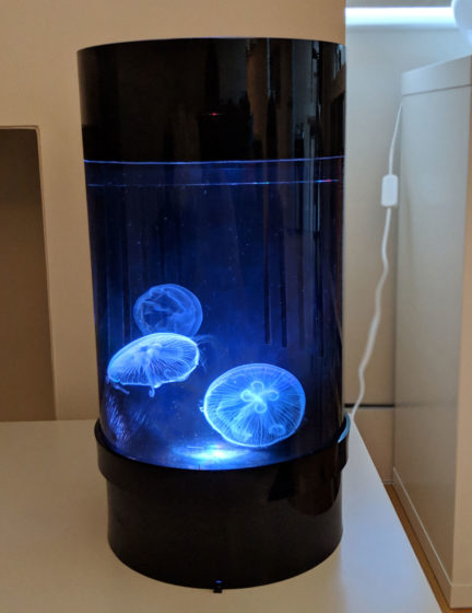 Jellyfish Art Cylinder Nano White