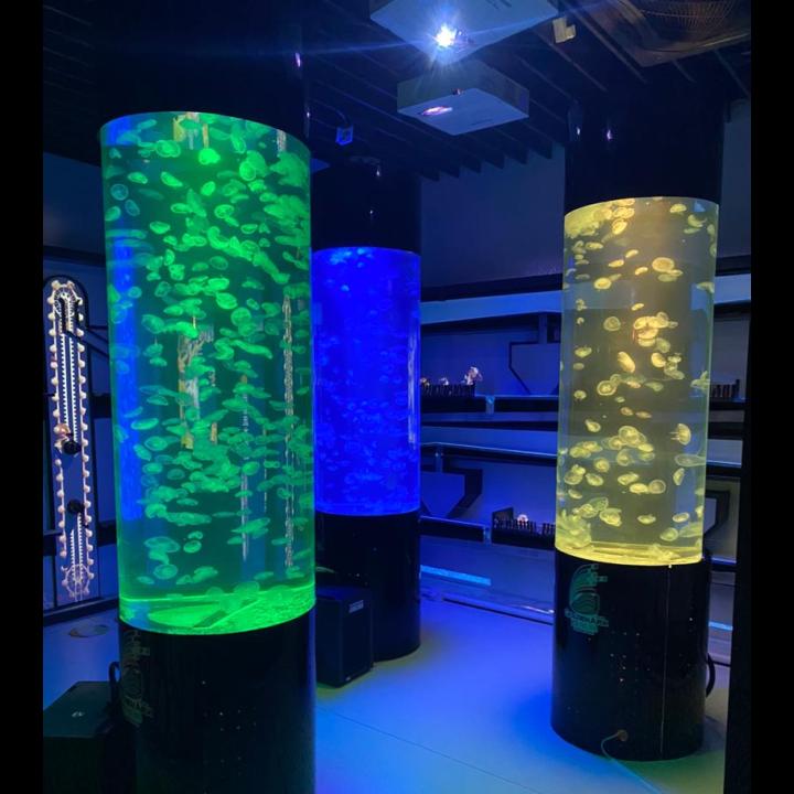 Jellyfish Aquarium C600